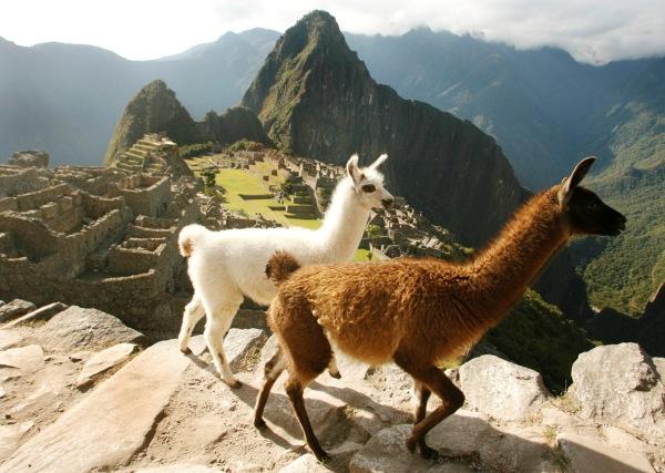 Tour de lujo Cusco - Valle Sagrado